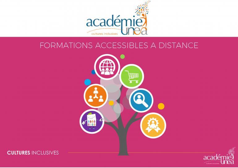 L'offre de formation à distance de l'académie UNEA
