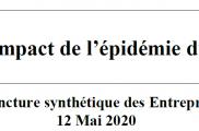 TROISIÈME MESURE DE L'IMPACT DE L'ÉPIDÉMIE DU COVID-19 SUR LES ENTREPRISES ADAPTEES