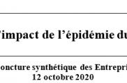 QUATRIEME MESURE DE L'IMPACT DE L'ÉPIDÉMIE DU COVID-19 SUR LES ENTREPRISES ADAPTEES
