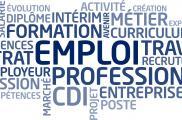La dynamique de création d'emplois dans les Entreprises Adaptées est toujours soutenue