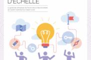 STRATEGIES POUR CHANGER D'ECHELLE