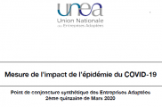 Mesure de l'impact de l'épidémie du COVID-19 sur les Entreprises Adaptées